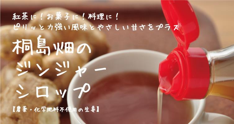 桐島畑 生姜商品